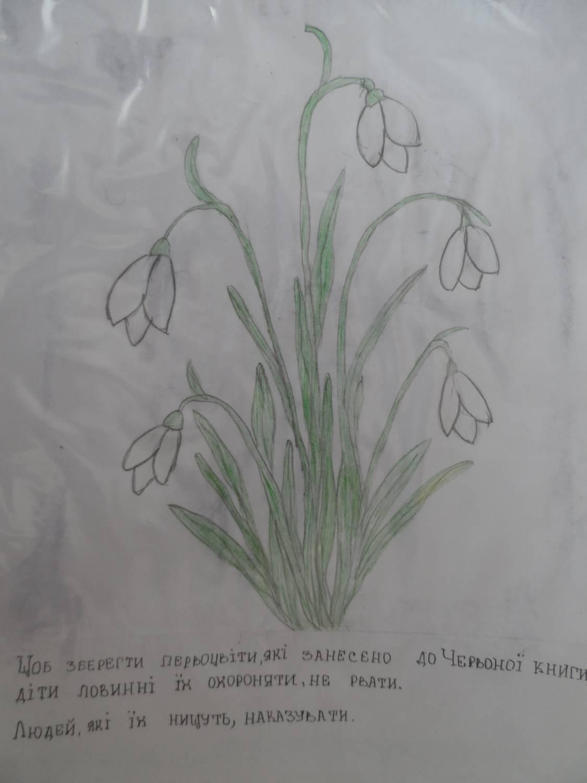 Збережи первоцвіти - 29 Квітня 2013 - ЗОШ І-ІІІ ст. №3 ім.
